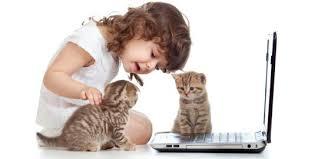 Cara Merawat Anak Kucing Peliharaan dengan Benar